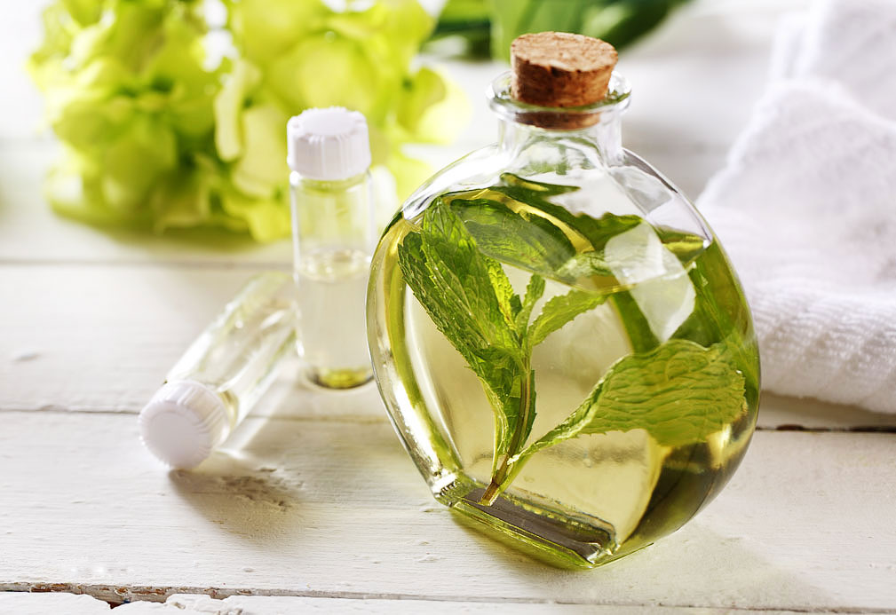 Fresh Mint Massage Oil recipe made with canola oil